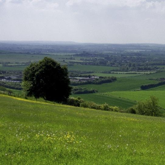 In Dunstable Bedfordshire: Dunstable, England